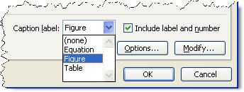 MS Word 2003 Index and Tables CAPTION LABEL