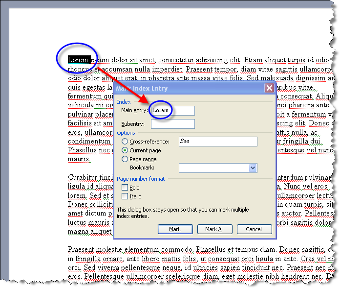 MS Word 2003 Mark Index Entry dialog box