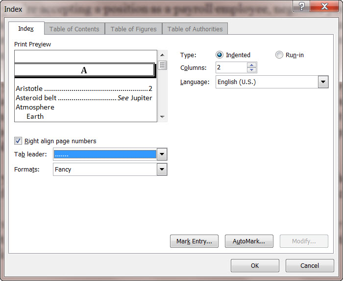 MS Word 2010 Index Dialog Box