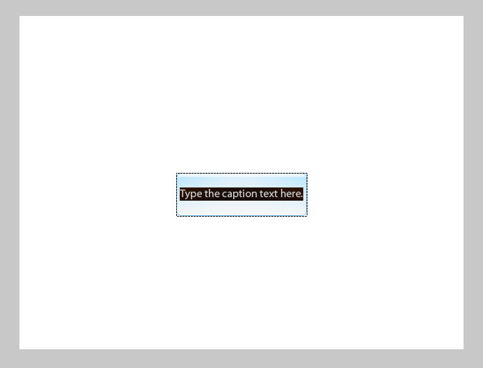 Adobe Captivate 5 INSERT TEXT PLACE HOLDER