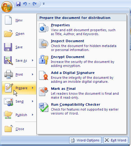 MS Word 2007 Prepare Document for Distribution