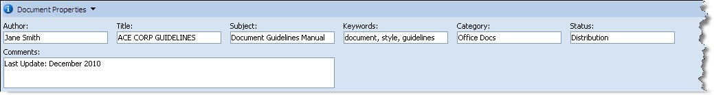 MS Word 2007 Document Properties
