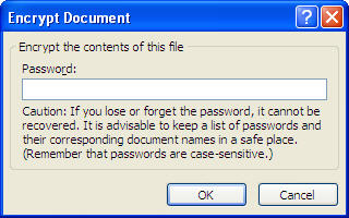 MS Word 2007 Encrypt Document