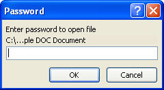 MS Word 2007 Password Enter Box