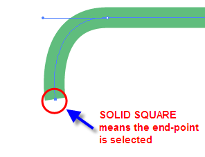 Adobe Illustrator CS3 Path 3 End-Point Selected