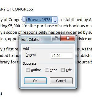MS Word 2007 Inserting Citation 4