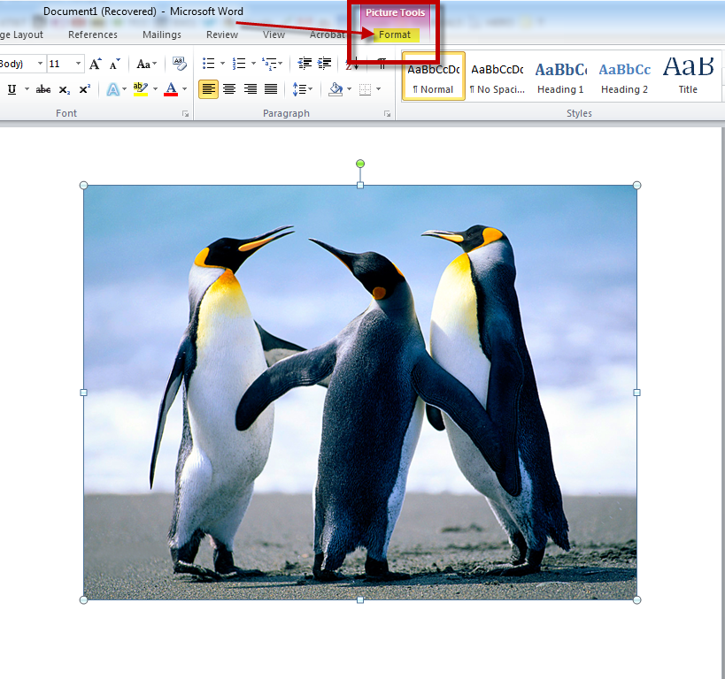 MS Word 2010 Remove Background of Image 1
