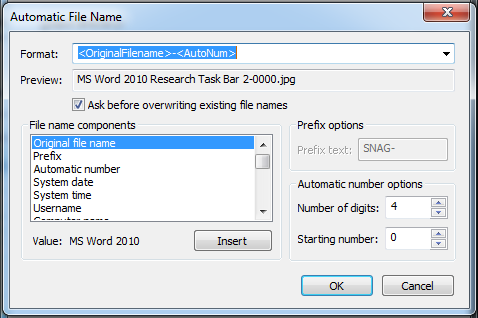 Snagit Convert Images 5 Automatic File Name Options