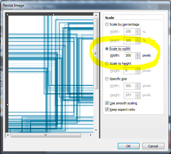 Snagit Profile Wizard 6 Resize Image