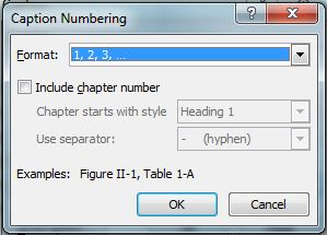 MS Word 2007 Figure Captions with Chapter Numbers 3