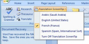 MS Word 2007 Translation Screentip 2