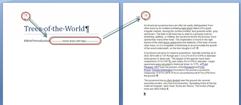 How to use the Odd-Page and Even-Page Breaks in MS Word 2007