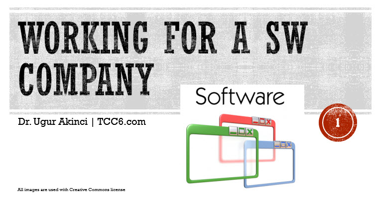 Working for a Software Company